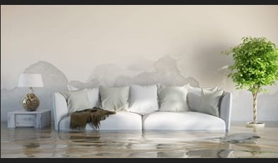 4 Good Reasons Why Professional Water Damage Cleanup Fairfax VA is Wise